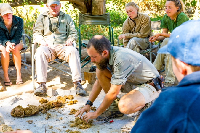 Safari guide teaching students about dung in the bush