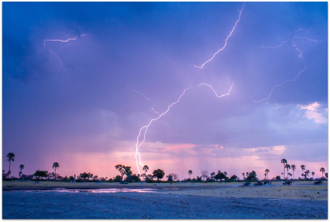 Elephants during lightning storm in Hwange National Park in Zimbabwe