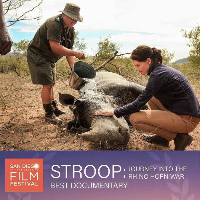 STROOP, best documentary award at San Diego Film Festival