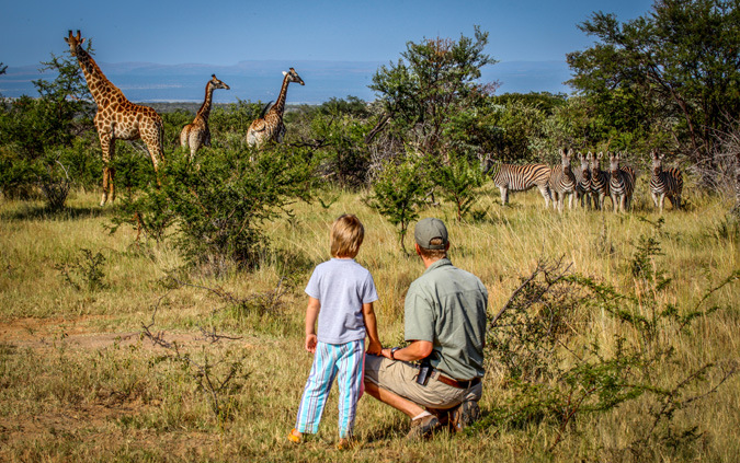 Guide and kid watching zebra and giraffe in the Waterberg in South Africa
