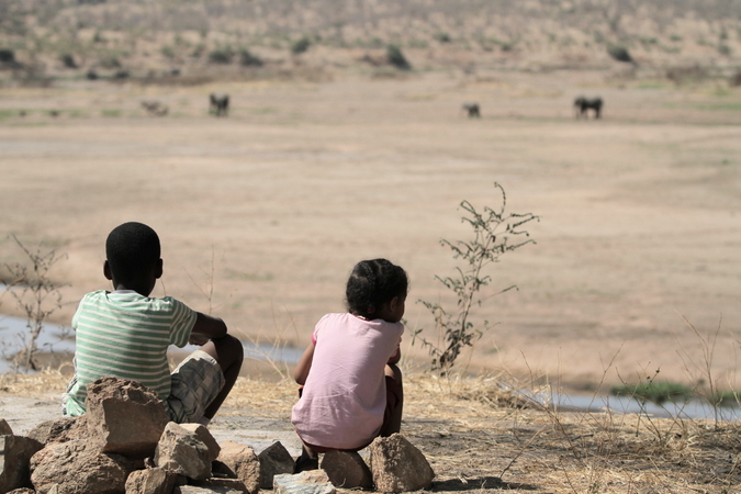 Two children watching elephants in the distance in Ruaha in Tanzania