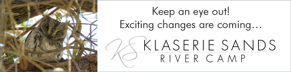 Klaserie River Sands