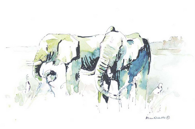 Watercolour painting of elephants by Alison Nicholls