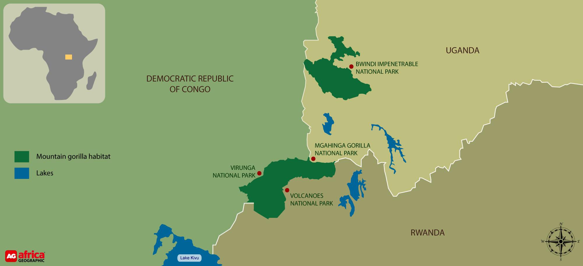 Mountain gorilla distribution map