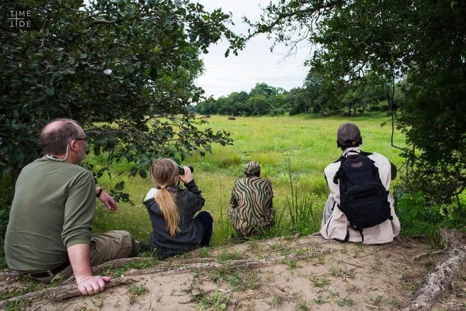 Family watching elephants in Zambia