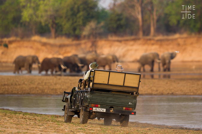 Game drive vehicle with elephants