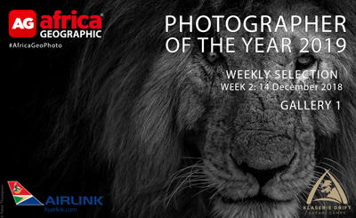 Photographer of the Year 2019 Weekly Selection Week 2