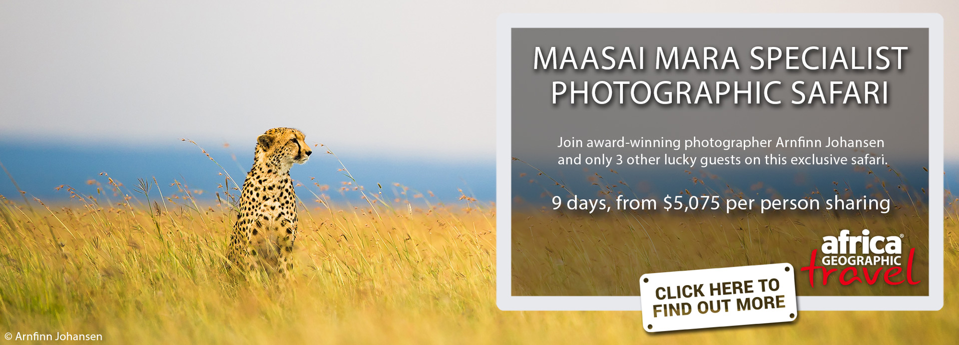 Maasai Mara Specialist Photographic Safari