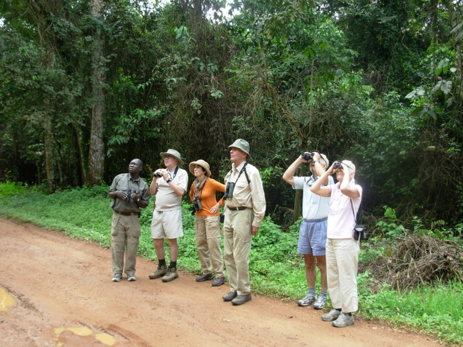 Bird watching in Budongo, Uganda