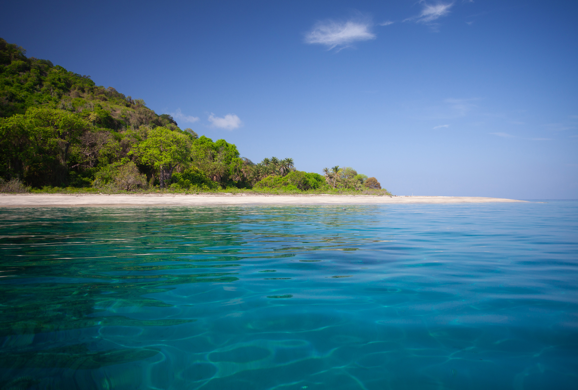 Mohéli has the Comoros' largest biodiversity, over land and under the sea