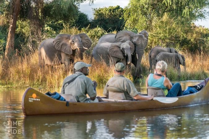 Canoeing along Zambezi River with elephants, Zambia
