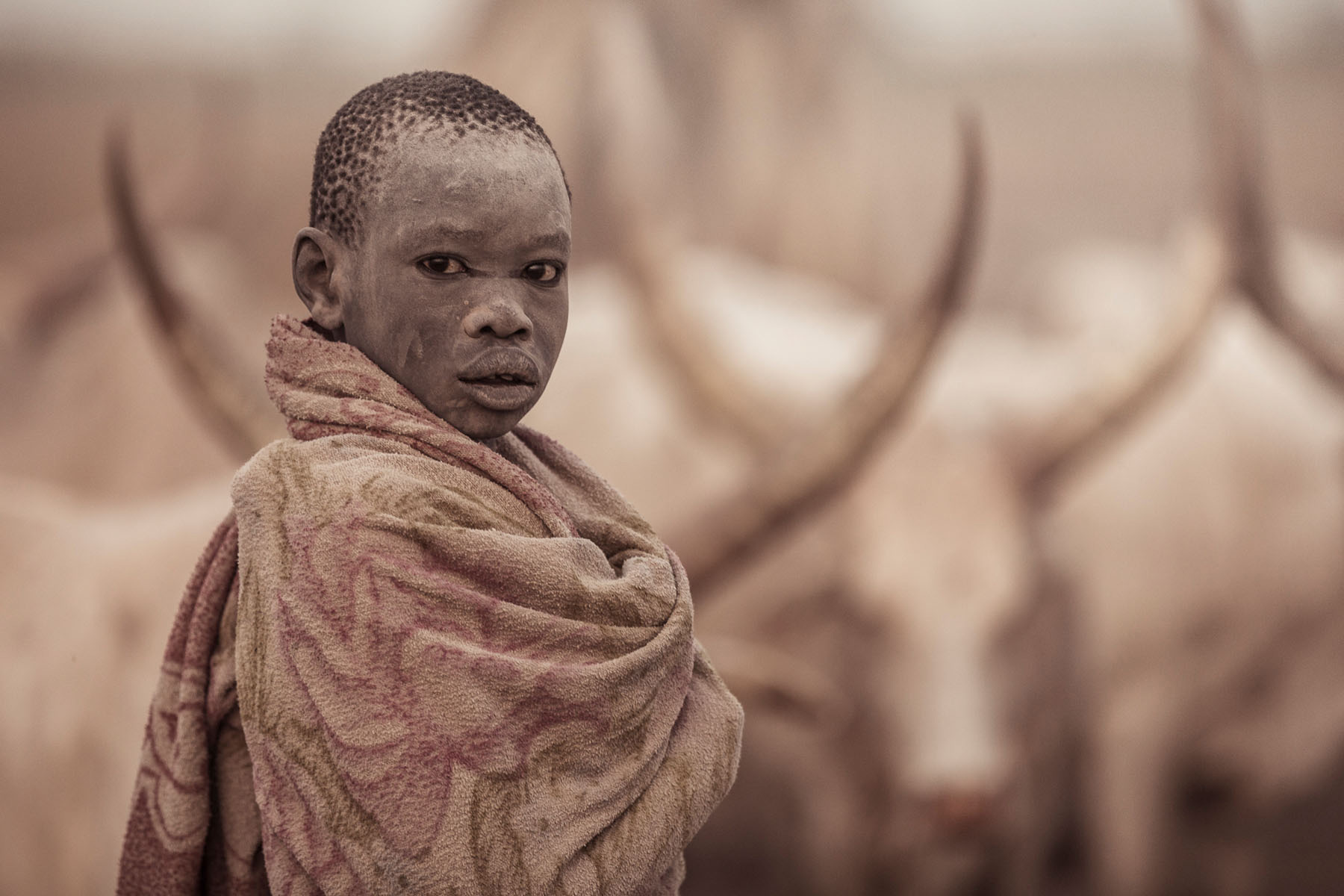 A Mundari boy covers himself with a blanket in the early morning while keeping watch over the cattle © Joe Buergi
