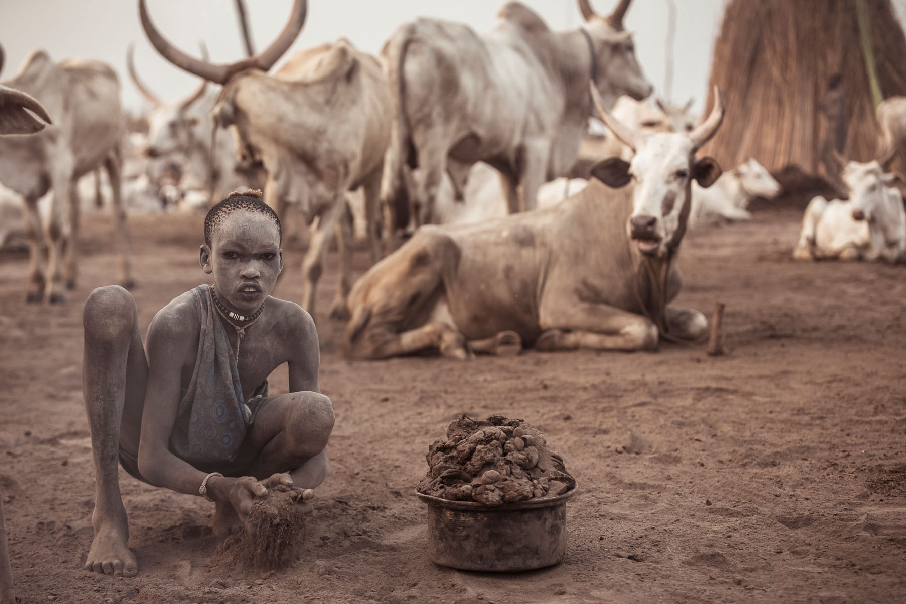 A Mundari boy collects dung for burning – the ash is used, amongst other things, to protect themselves and their prized cattle from insects © Joe Buergi