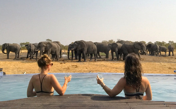 Two guests at pool with elephant herd in background