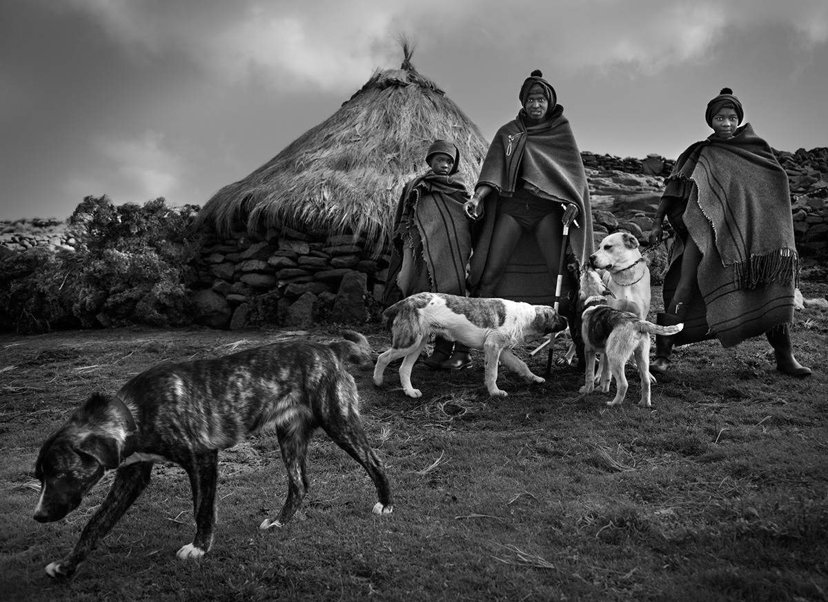 Shepherds and their dogs just before heading out to collect their cattle, Lesotho © Hesté de Beer