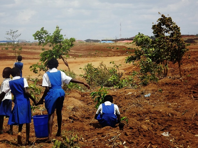 School children planting trees in Malawi