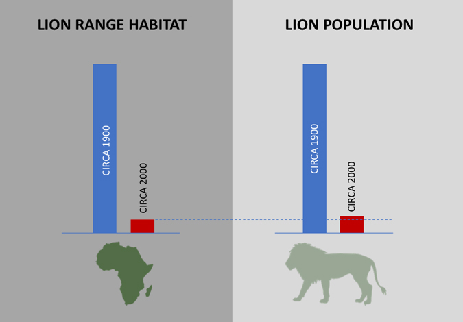 Graph showing lion range and population