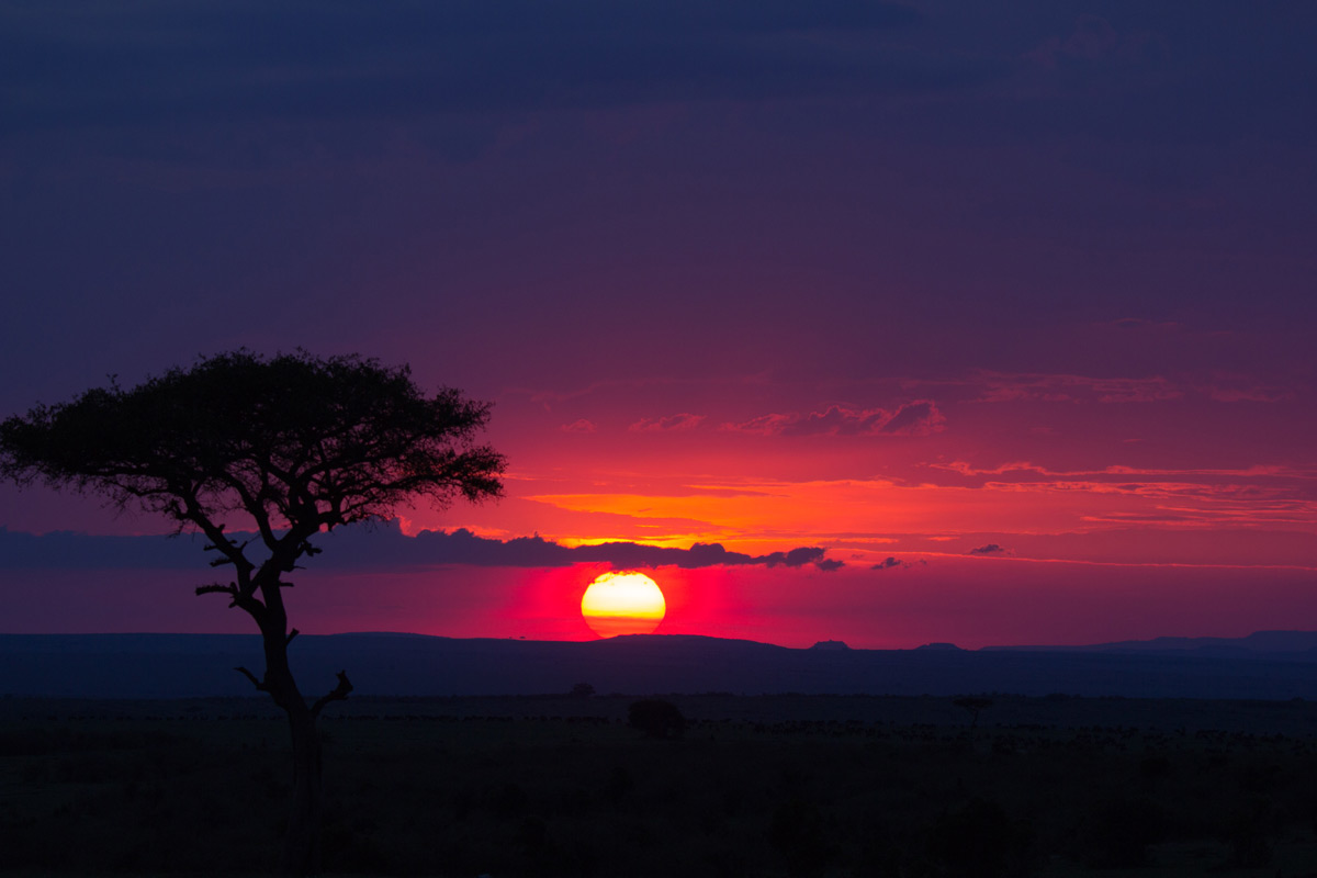 A stunning sunset over Maasai Mara National Reserve, Kenya © Grace Wangui