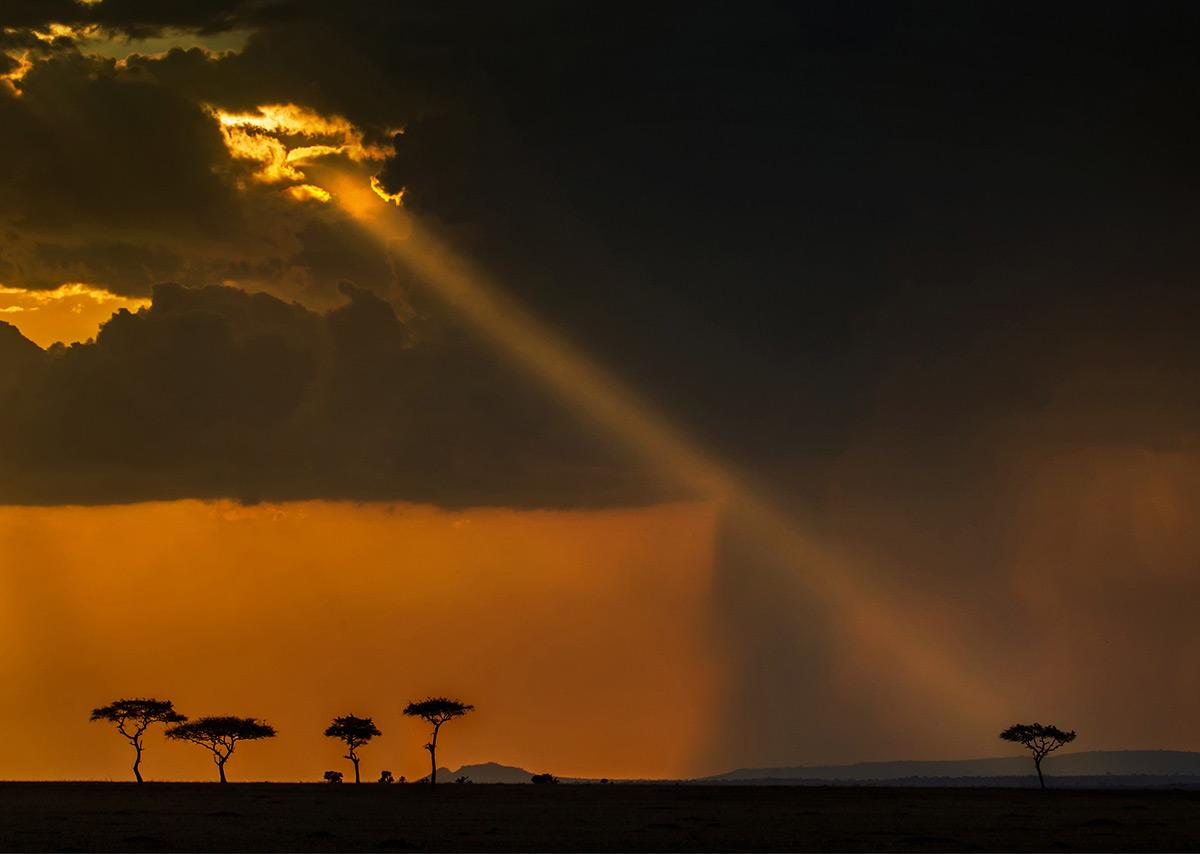 Sunset in Serengeti National Park, Tanzania © Hesté de Beer