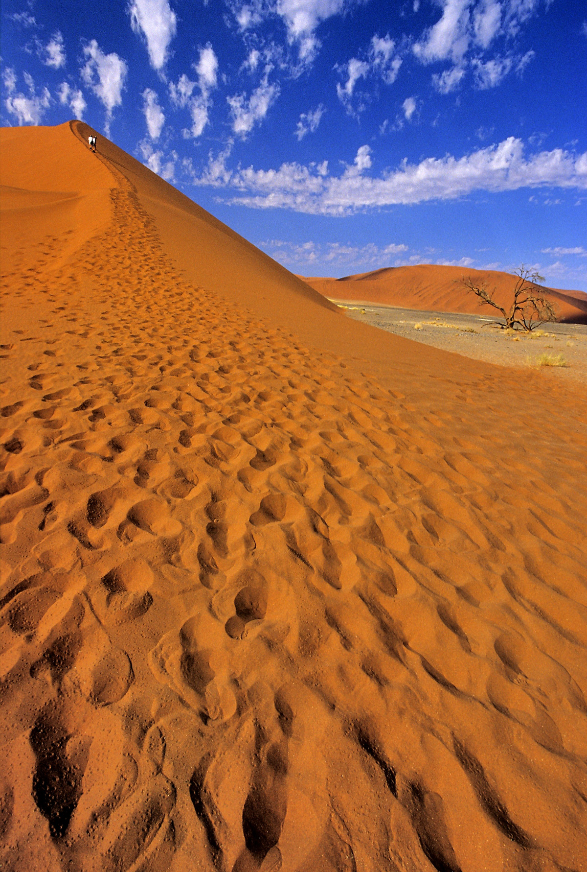 Climbing up a sand dune in Sesriem, Namib Desert, Namibia © Vittorio Ricci