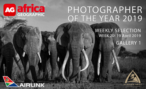 Photographer of the Year 2019 Weekly Selection Gallery 1