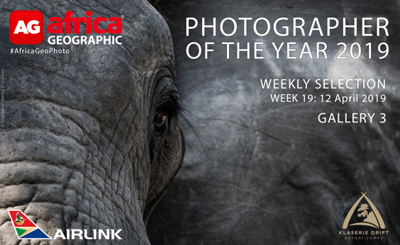 Photographer of the Year 2019 Weekly Selection Gallery 3