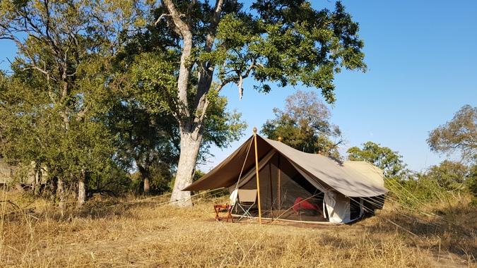 Glamping in Timbavati, Greater Kruger, South Africa, safari