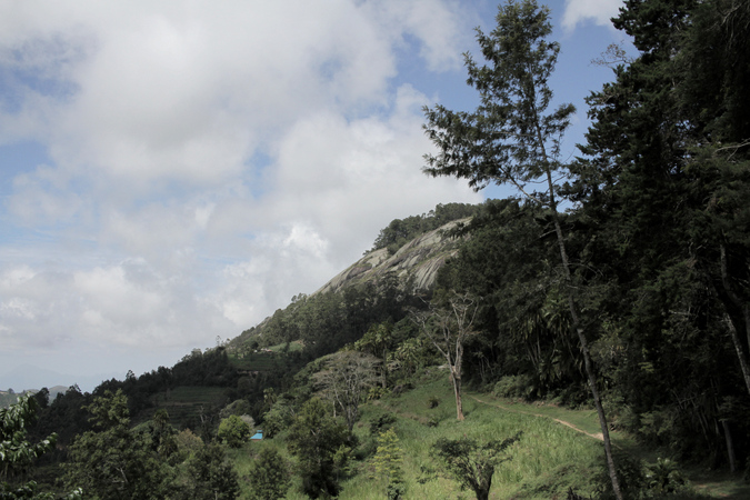 Ngangao Rock, Taita Hills forest in Kenya