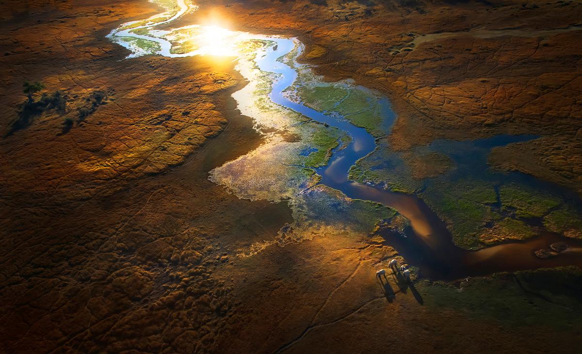 Sunset illuminates elephants as they roam the Okavango Delta, Botswana © Panos Laskarakis