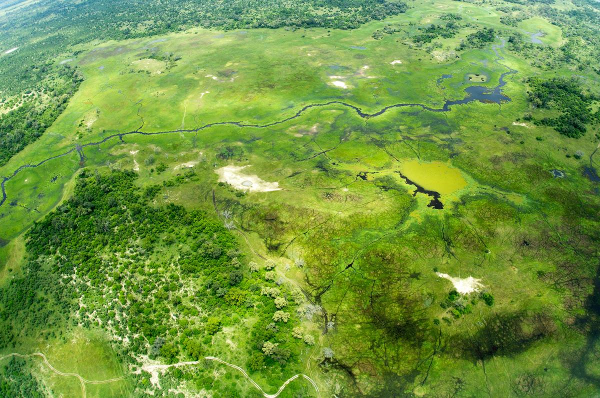 Aerial view over Okavango Delta, Botswana © Prelena Soma Owen