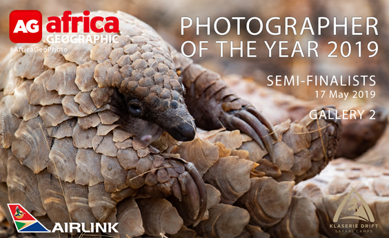 Photographer of the Year 2019 Semi-finalists Gallery 2