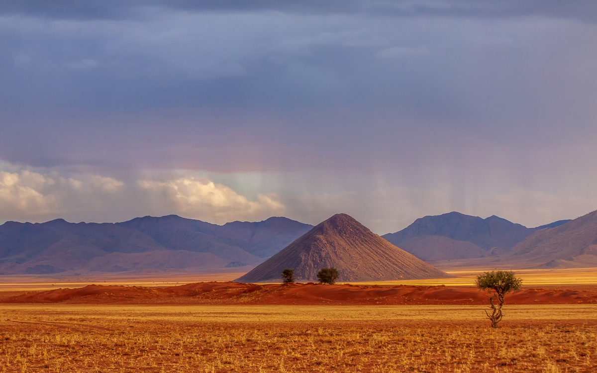 Chocolate Hill in the limelight after 2mm of rain in southern Namib, Namibia © Sanet Rossouw
