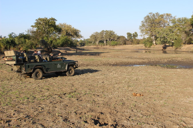 The autumn Kruger bushveld starts drying out and game drives become more productive, safari in Africa