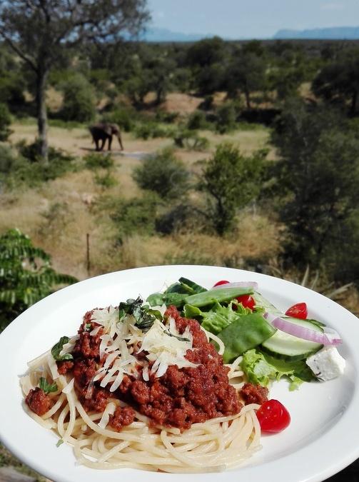 Spaghetti bolognaise and elephant, at Sausage Tree Safari Camp