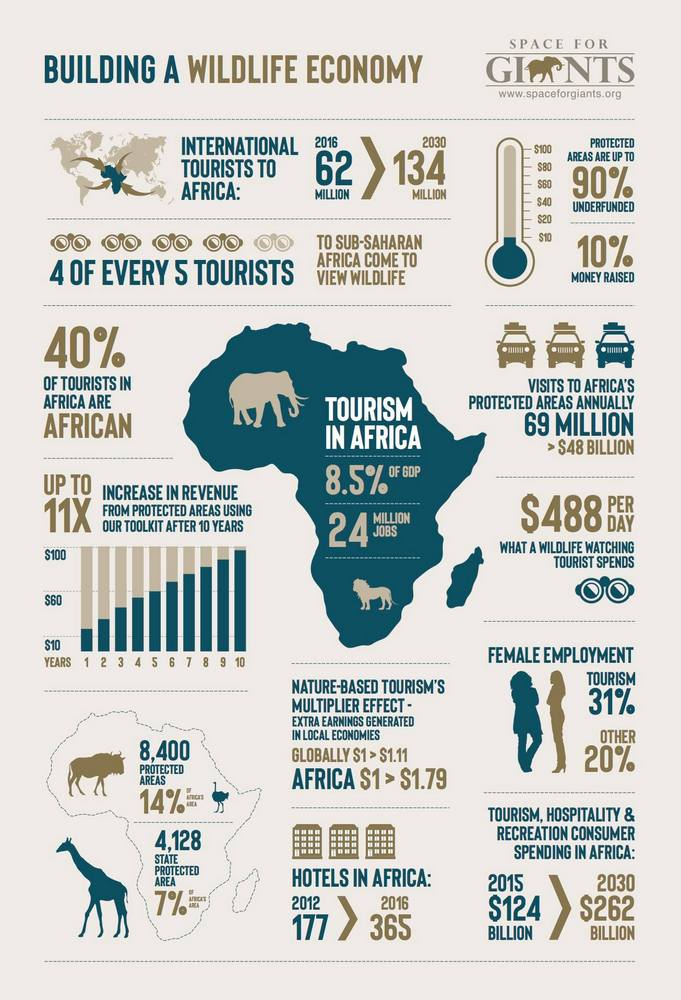 Infographic on building a wildlife economy