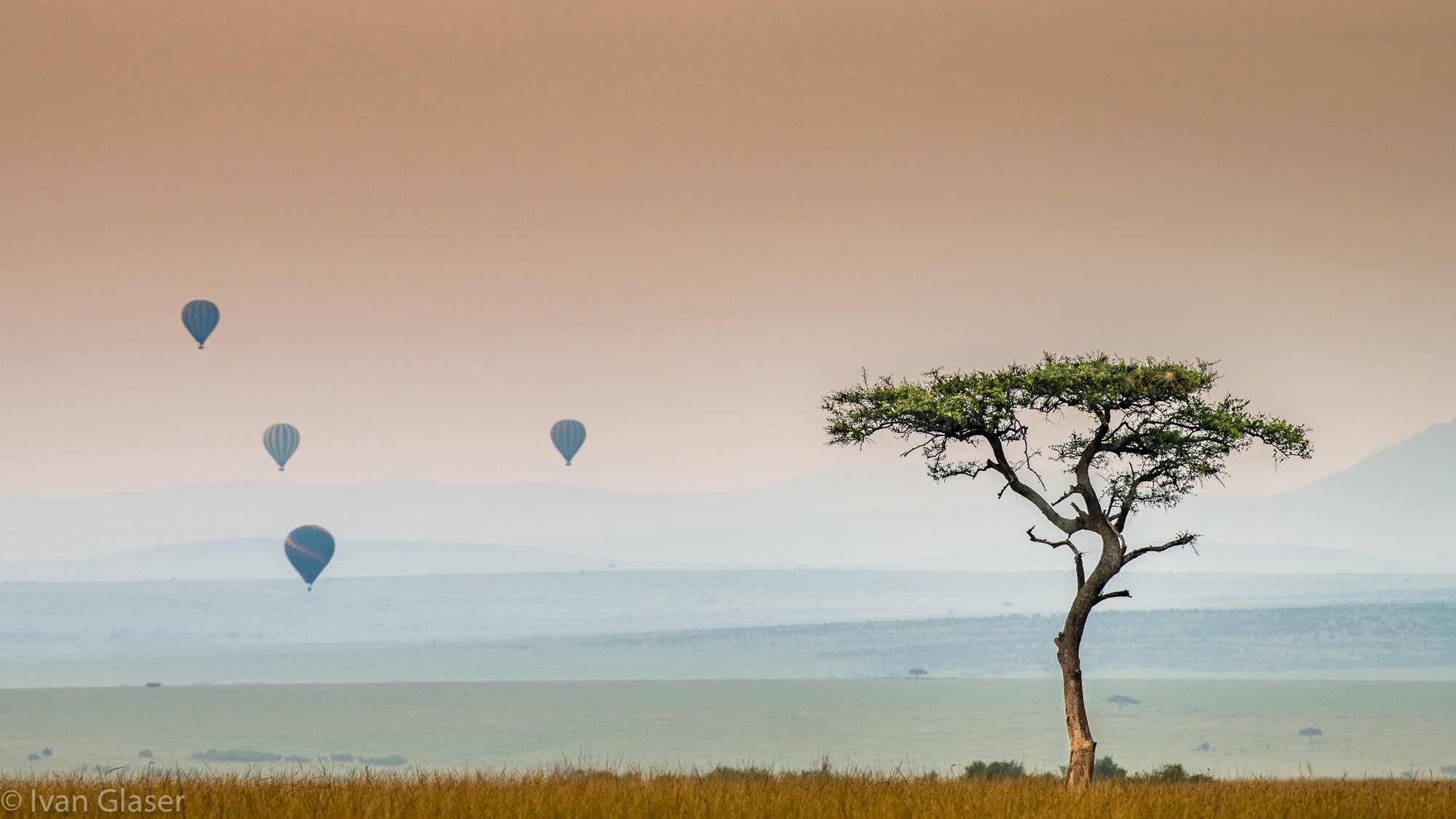 Hot air balloons in Maasai Mara