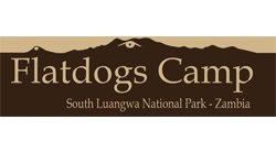 Flatdogs Camp