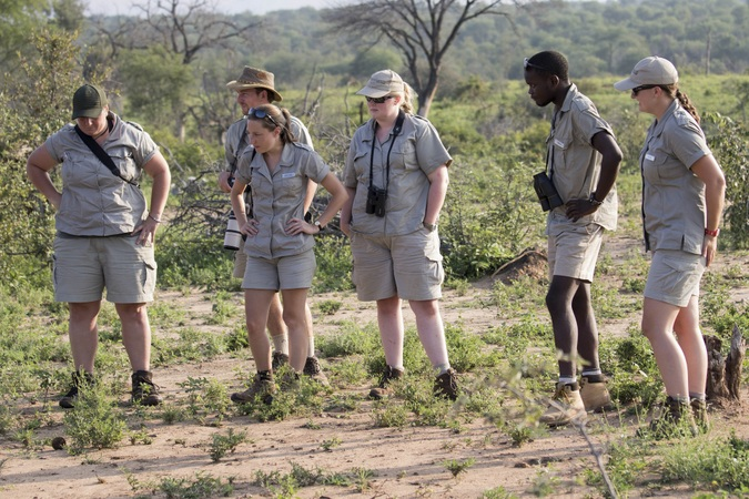 Female field guides in the bush