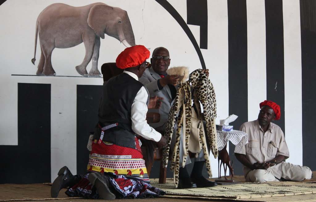 Synthetic wild cat fur, known as Heritage Furs, being presented to the Lozi King