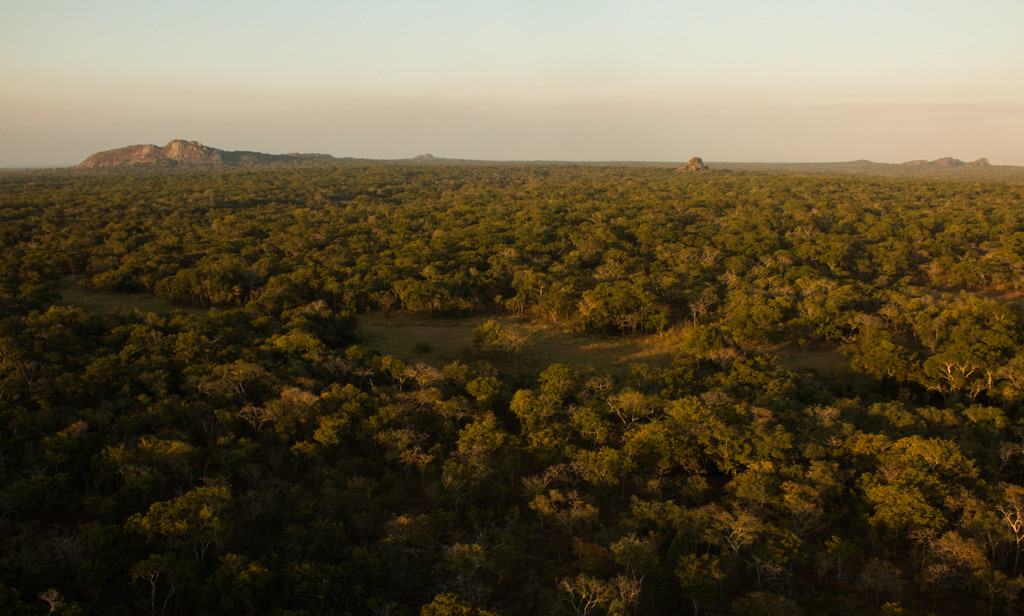 View of Gilé National Reserve in Mozambique