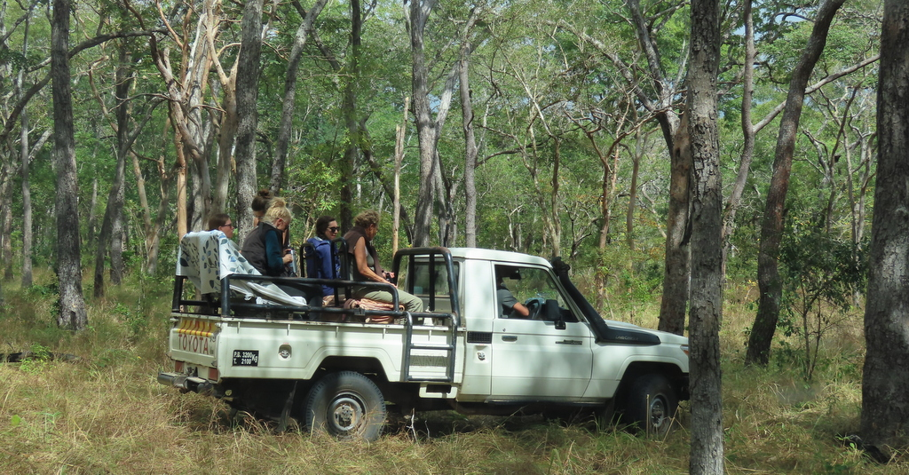 Team members on vehicle in Gilé National Reserve in Mozambique