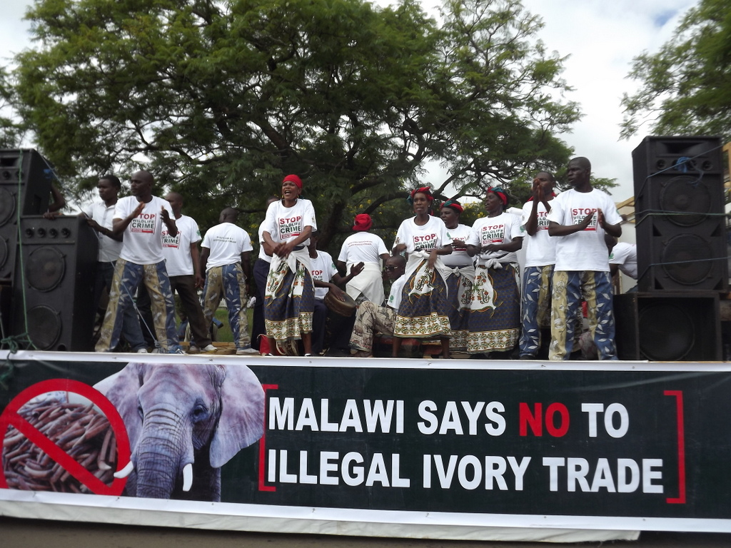 Performers on stage during demonstration against illegal wildlife trade in Malawi