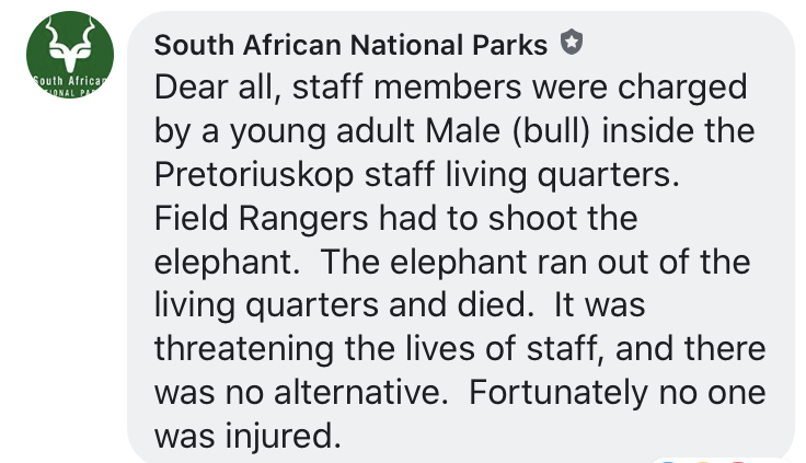statement by SANParks on elephant shooting