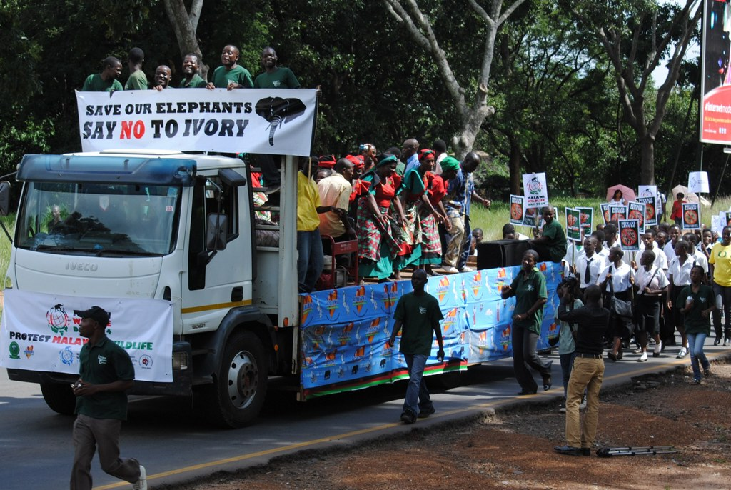 People marching against the illegal wildlife trade in Malawi