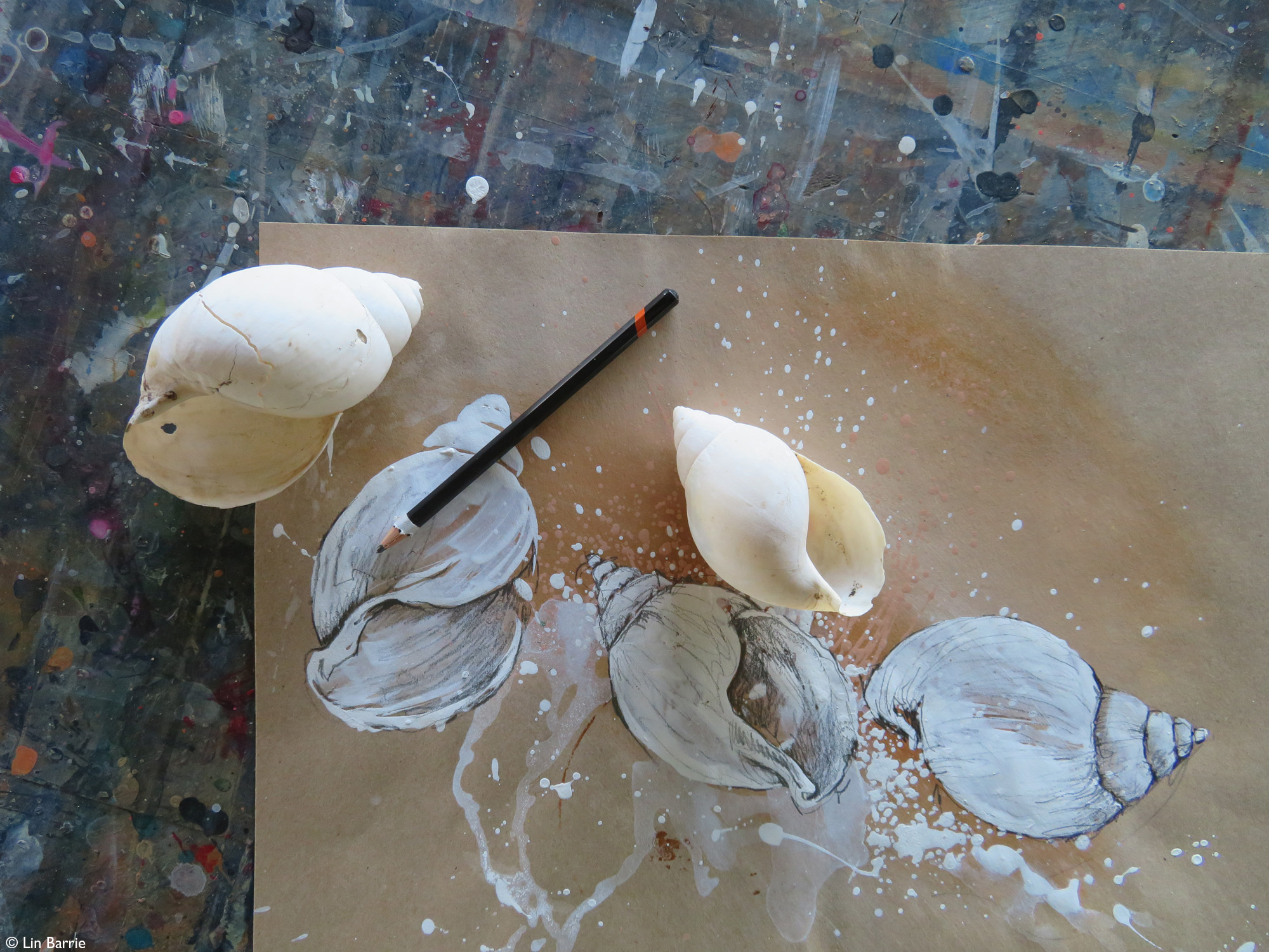 Land snail shells on top of painting of them