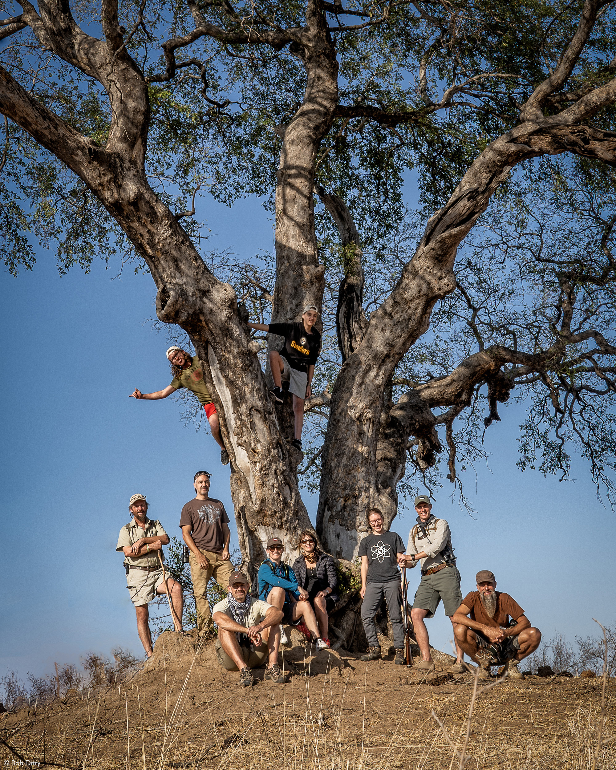 Group photo under weeping boerbean tree, Klaserie Private Nature Reserve, South Africa