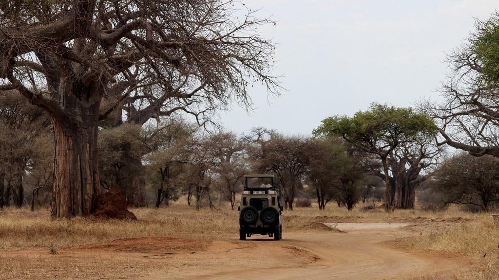 Game drive vehicle in Tarangire National Park, Tanzania
