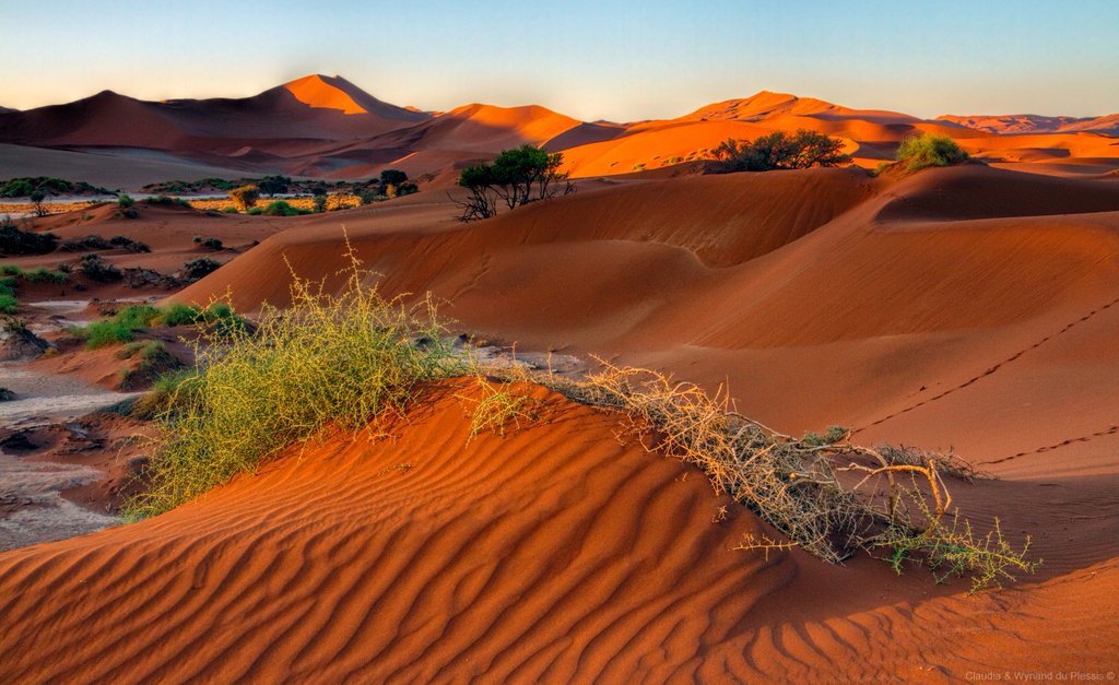 The Namib Desert at Sossusvlei, Namibia