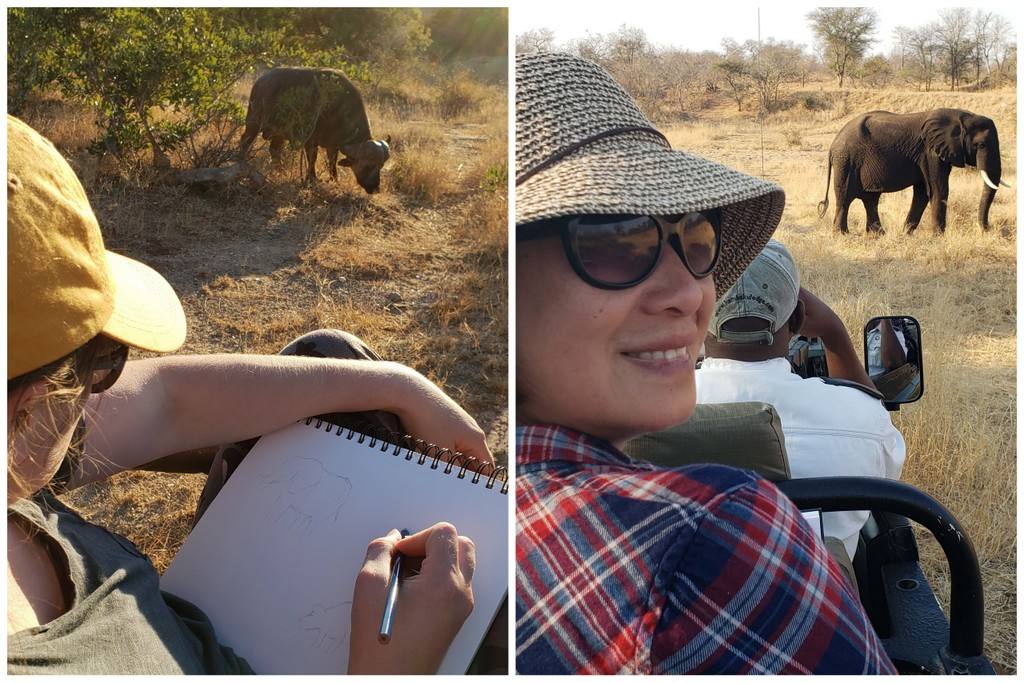 Two images of guests sketching a buffalo and elephant in Greater Kruger, South Africa