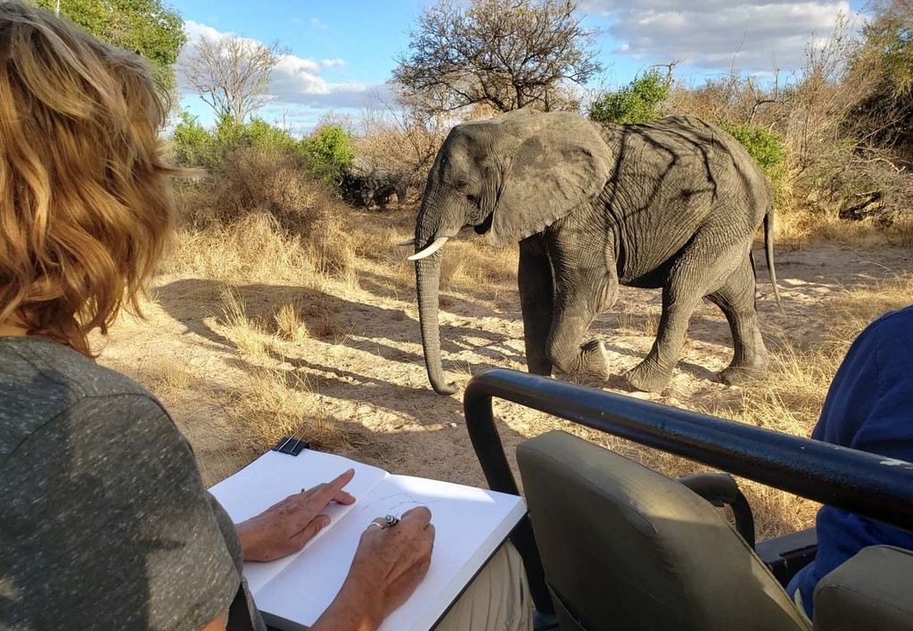 Guest sketching an elephant in Greater Kruger, South Africa